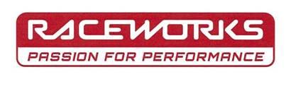 RACEWORKS FEMALE TO MALE SWIVEL ELBOW AN-10 45 Deg RWF-142-10BK